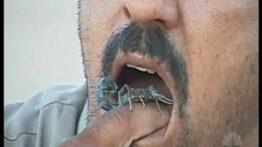 خوردن عقرب زنده توسط این مرد
