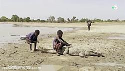 تمساح سواری کودکان در بورکینافاسو!