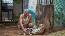 حمله حیوانات وحشی به خانه