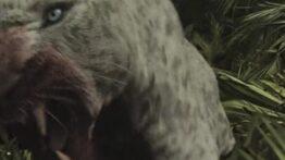 فیلم ترسناک از حمله حیوانات